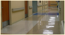 Floor - Commercial Cleaning
