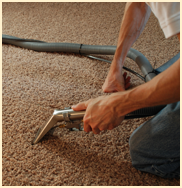 Carpet Cleaning - Commercial Cleaning